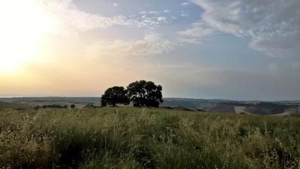 Tuscania Impianto Fotovoltaioco Pian di Vico