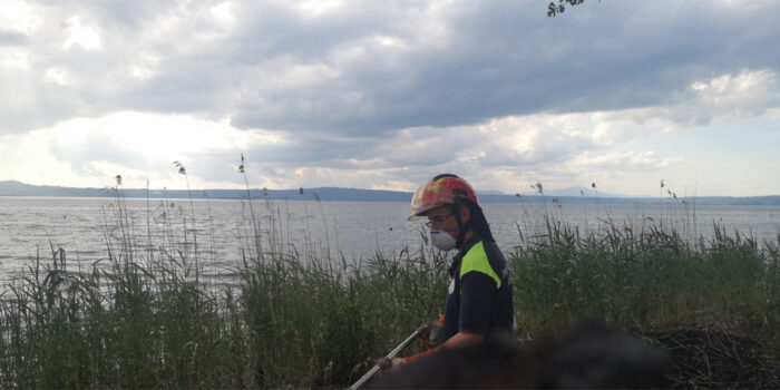 lago Montefiascone incendio