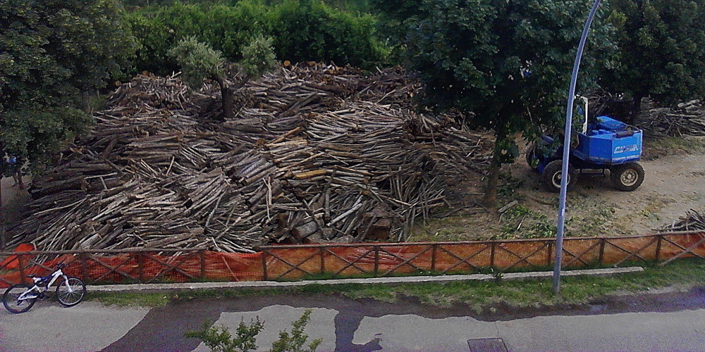 Area Verde Pubblico di Caprarola località Poggio dei Cerri