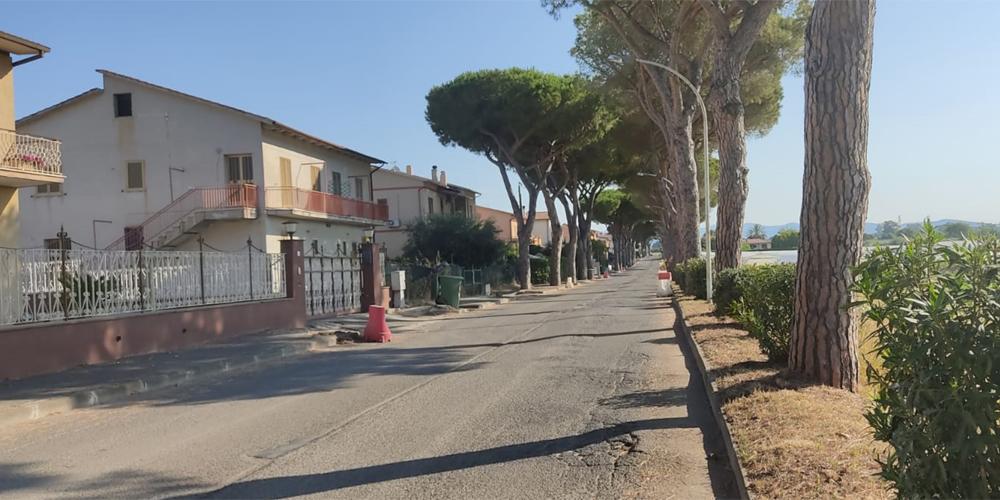 Viale dei Pini - Pescia Romana