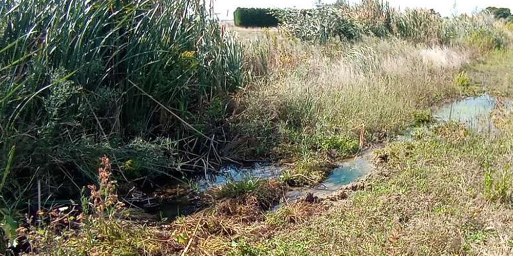 perdita acqua Montalto di Castro